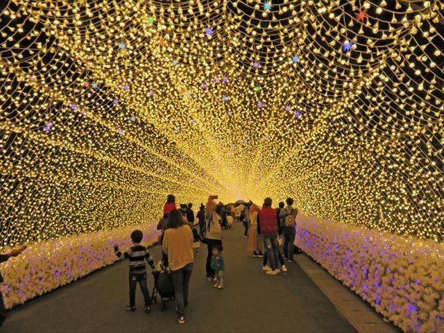 光のトンネル(1)