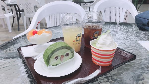 掛川花鳥園の抹茶ロールケーキ